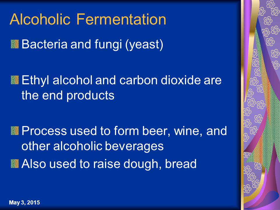 Alcoholic Fermentation Bacteria and fungi (yeast) Ethyl alcohol and carbon dioxide are the end products Process used to form beer, wine, and other alcoholic beverages Also used to raise dough, bread