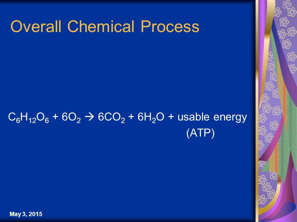 May 3, 2015 Overall Chemical Process C 6 H 12 O 6 + 6O 2  6CO 2 + 6H 2 O + usable energy (ATP)