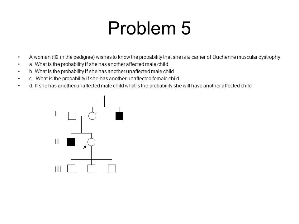 Problem 5 A woman (II2 in the pedigree) wishes to know the probability that she is a carrier of Duchenne muscular dystrophy. a. What is the probabilit