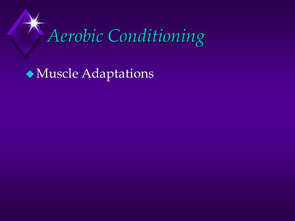 Aerobic Conditioning u These fuels include CHO and fatty acids supplied from within the cell or from the circulation.