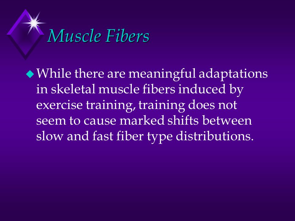 Muscle Fibers u While there are meaningful adaptations in skeletal muscle fibers induced by exercise training, training does not seem to cause marked shifts between slow and fast fiber type distributions.