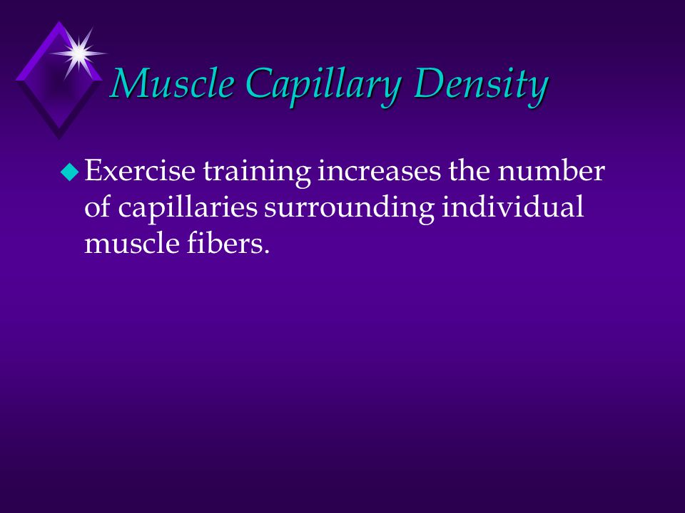 Muscle Capillary Density u Exercise training increases the number of capillaries surrounding individual muscle fibers.
