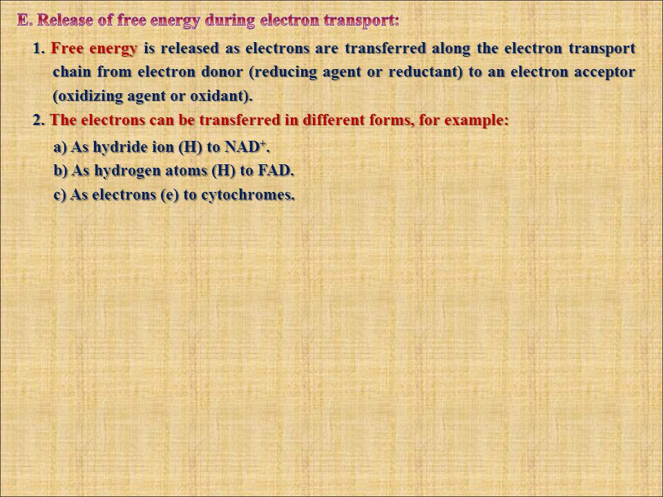 1. Free energy is released as electrons are transferred along the electron transport chain from electron donor (reducing agent or reductant) to an ele