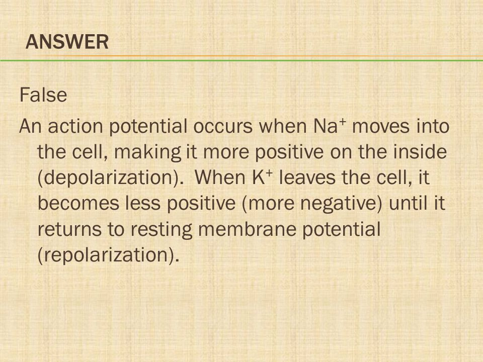 ANSWER False An action potential occurs when Na + moves into the cell, making it more positive on the inside (depolarization). When K + leaves the cel