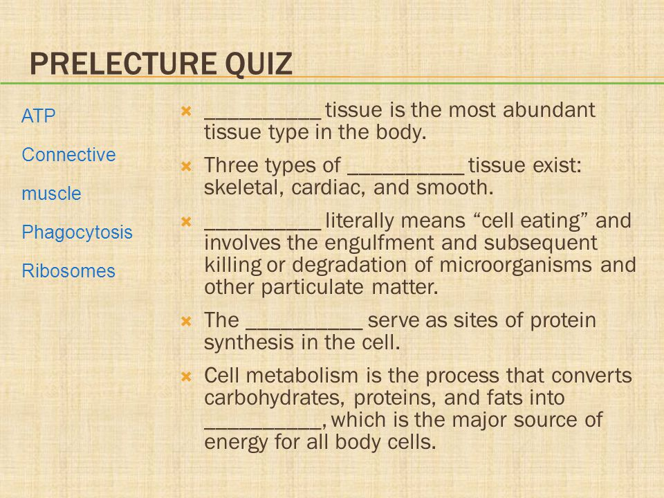 PRELECTURE QUIZ  __________ tissue is the most abundant tissue type in the body.  Three types of __________ tissue exist: skeletal, cardiac, and smo