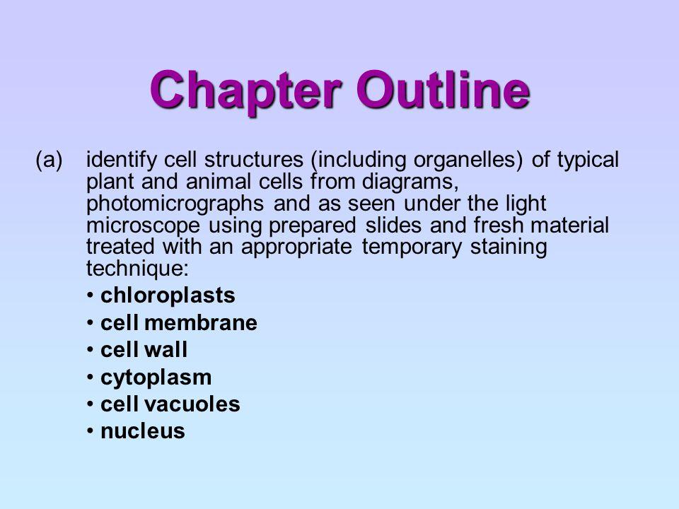 Plant Cell Plant Cells: http://lgfl.skoool.co.uk/keystage3.aspx?id=63