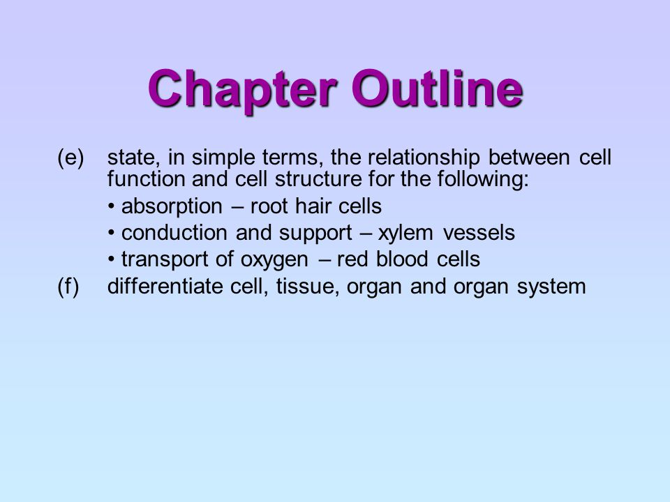 How is cell structure related to cell function.