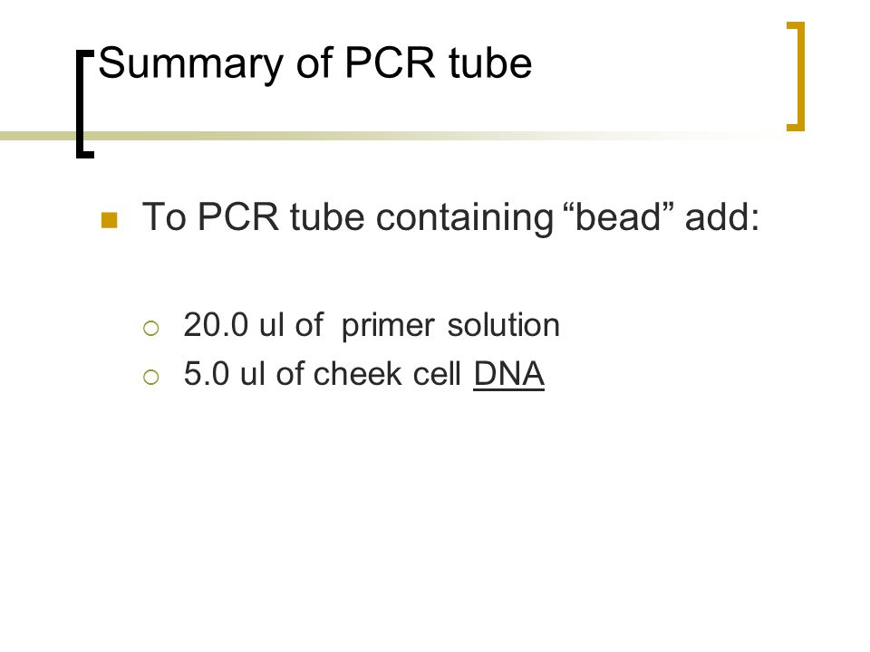 Summary of PCR tube To PCR tube containing bead add:  20.0 ul of primer solution  5.0 ul of cheek cell DNA