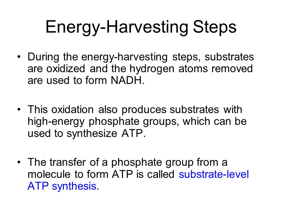 Energy-Harvesting Steps During the energy-harvesting steps, substrates are oxidized and the hydrogen atoms removed are used to form NADH.