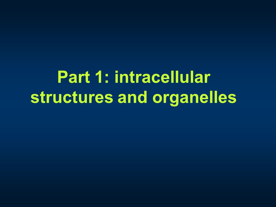 Part 1: intracellular structures and organelles