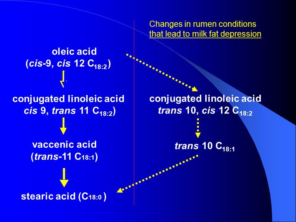 linoleicacid ( cis -9, cis -12 C 18:2 ) conjugatedlinoleicacid ( cis -9, trans -11 C 18:2 ) conjugatedlinoleicacid trans -10, cis -12 C 18:2 trans -10 C 18:1 linoleicacid ( cis -9, cis -12 C 18:2 ) ( cis -9, trans - vaccenic acid (trans-11 C 18:1 ) stearic acid (C 18:0 ) conjugatedlinoleicacid trans -10, cis - trans -10 C 18:1 Changes in rumen conditions that lead to milk fat depression