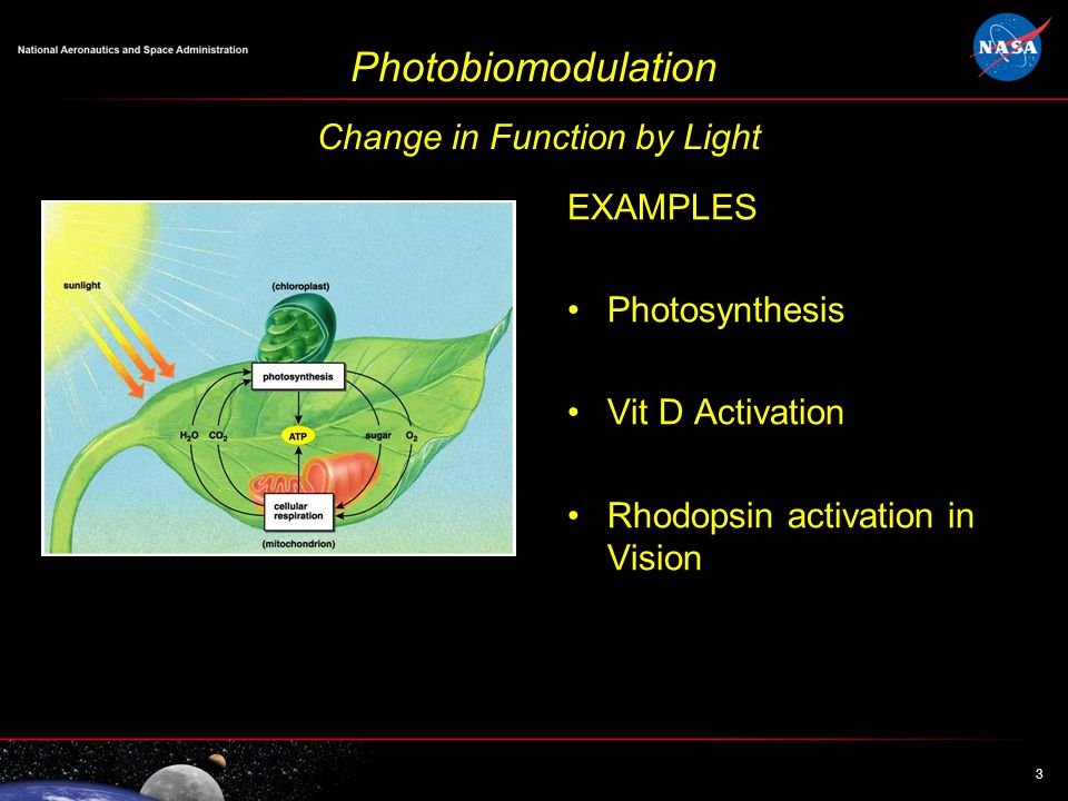 3 3 Photobiomodulation Change in Function by Light EXAMPLES Photosynthesis Vit D Activation Rhodopsin activation in Vision