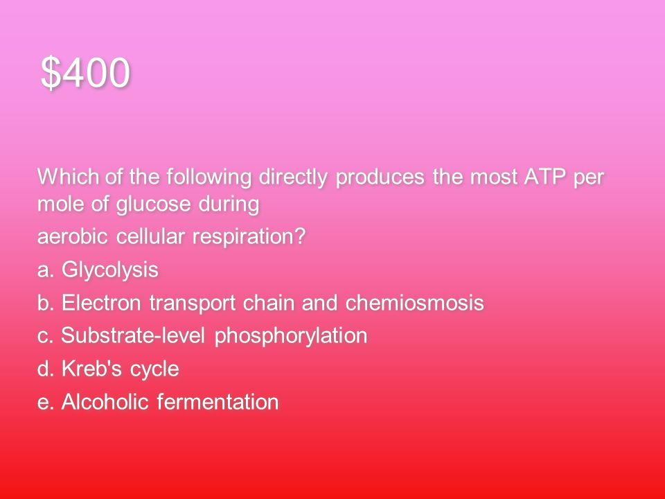 $400 Which of the following directly produces the most ATP per mole of glucose during aerobic cellular respiration.