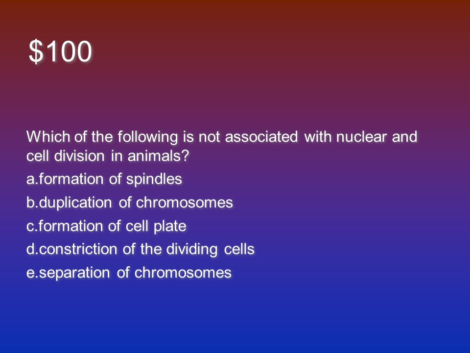 $100 Which of the following is not associated with nuclear and cell division in animals.