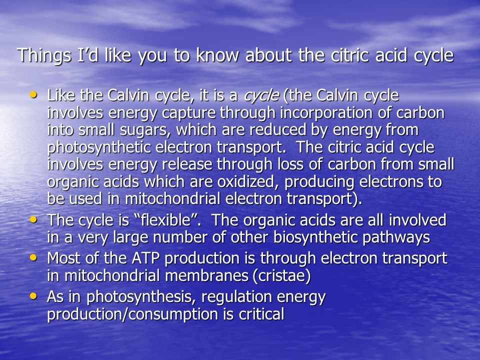 Things I'd like you to know about the citric acid cycle Like the Calvin cycle, it is a cycle (the Calvin cycle involves energy capture through incorporation of carbon into small sugars, which are reduced by energy from photosynthetic electron transport.
