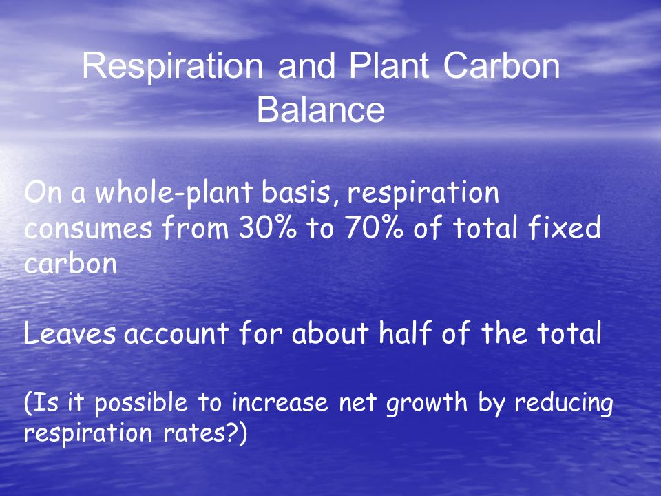 Respiration and Plant Carbon Balance On a whole-plant basis, respiration consumes from 30% to 70% of total fixed carbon Leaves account for about half of the total (Is it possible to increase net growth by reducing respiration rates )