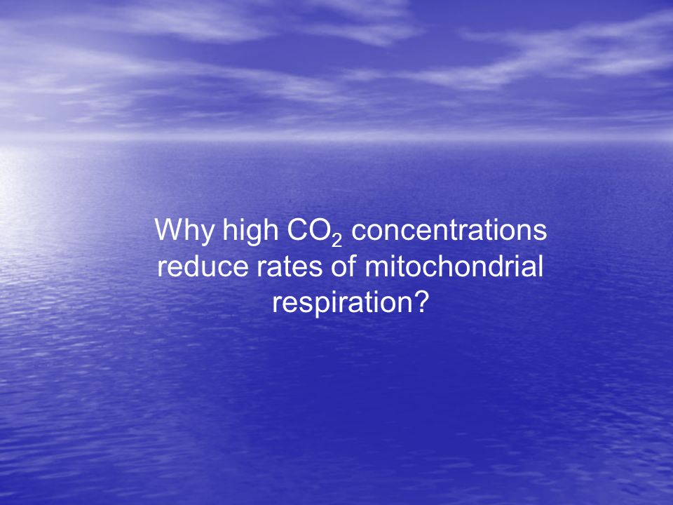 Why high CO 2 concentrations reduce rates of mitochondrial respiration?