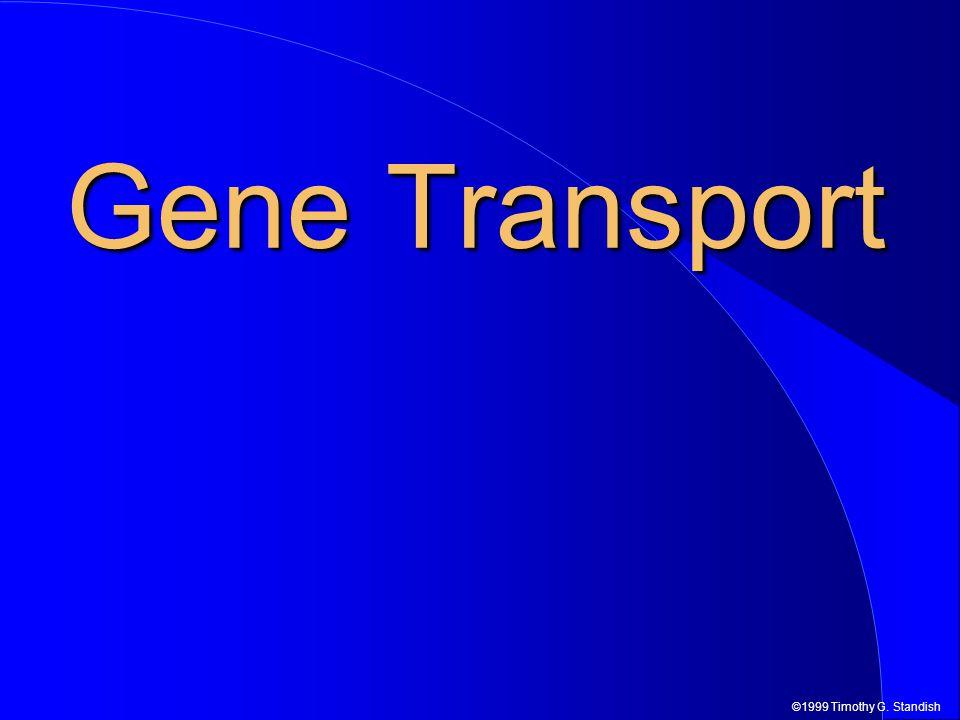 ©1999 Timothy G. Standish Gene Transport