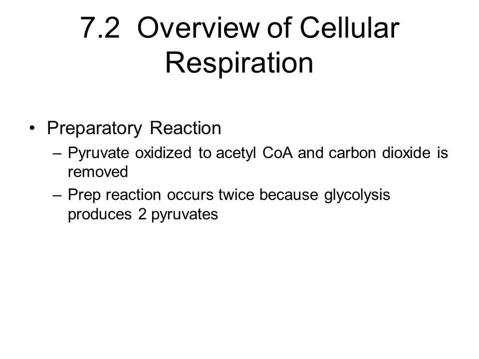 7.2 Overview of Cellular Respiration Preparatory Reaction –Pyruvate oxidized to acetyl CoA and carbon dioxide is removed –Prep reaction occurs twice because glycolysis produces 2 pyruvates