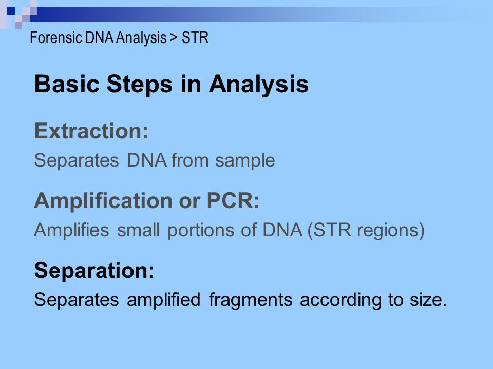 Basic Steps in Analysis Extraction: Separates DNA from sample Separation: Separates amplified fragments according to size. Amplification or PCR: Ampli