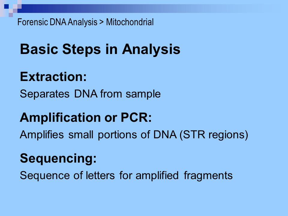 Basic Steps in Analysis Extraction: Separates DNA from sample Sequencing: Sequence of letters for amplified fragments Amplification or PCR: Amplifies