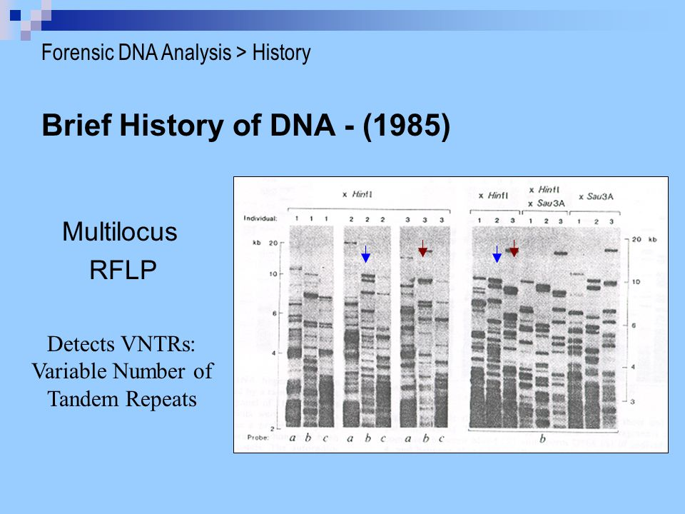 Compare to a ladder that has all peaks at each loci. Forensic DNA Analysis > STR
