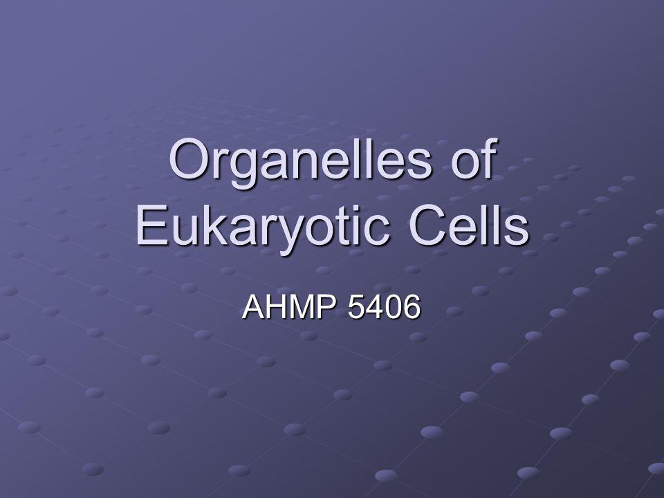 Organelles of Eukaryotic Cells AHMP 5406