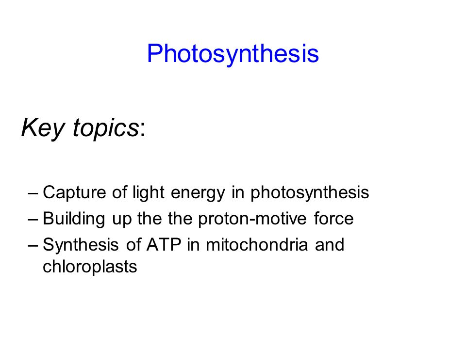 Photosynthesis –Capture of light energy in photosynthesis –Building up the the proton-motive force –Synthesis of ATP in mitochondria and chloroplasts Key topics: