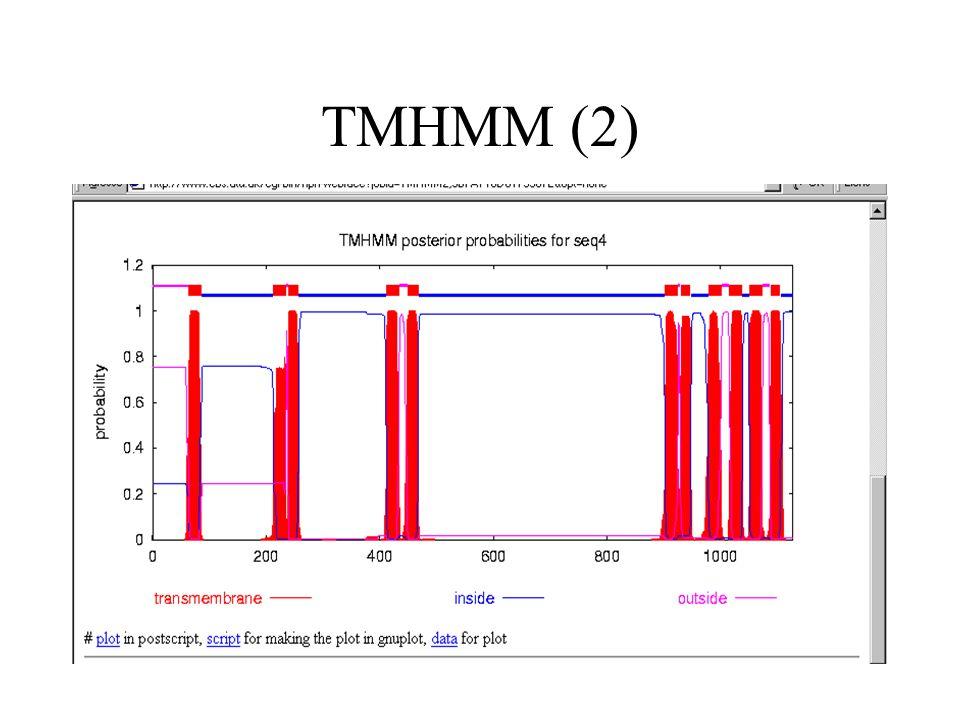TMHMM (2)