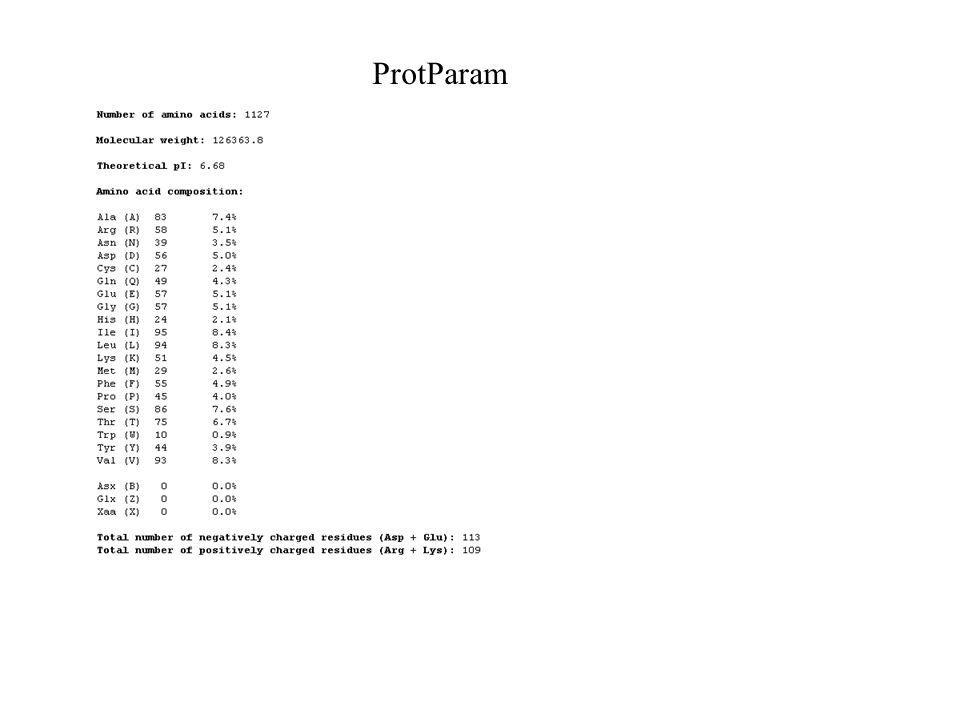ProtParam