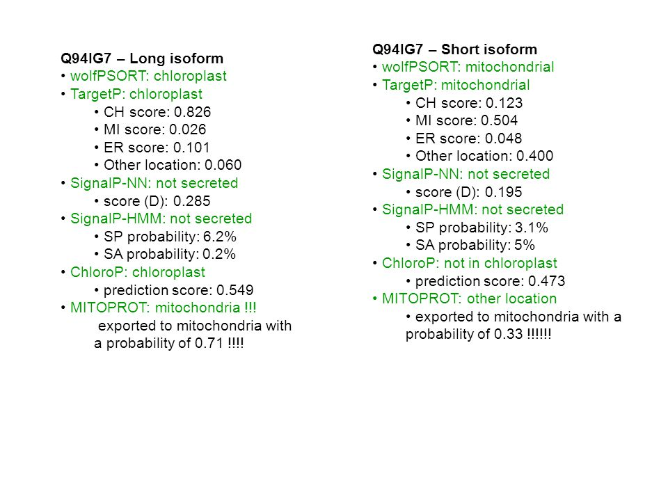 Q94IG7 – Long isoform wolfPSORT: chloroplast TargetP: chloroplast CH score: 0.826 MI score: 0.026 ER score: 0.101 Other location: 0.060 SignalP-NN: not secreted score (D): 0.285 SignalP-HMM: not secreted SP probability: 6.2% SA probability: 0.2% ChloroP: chloroplast prediction score: 0.549 MITOPROT: mitochondria !!.