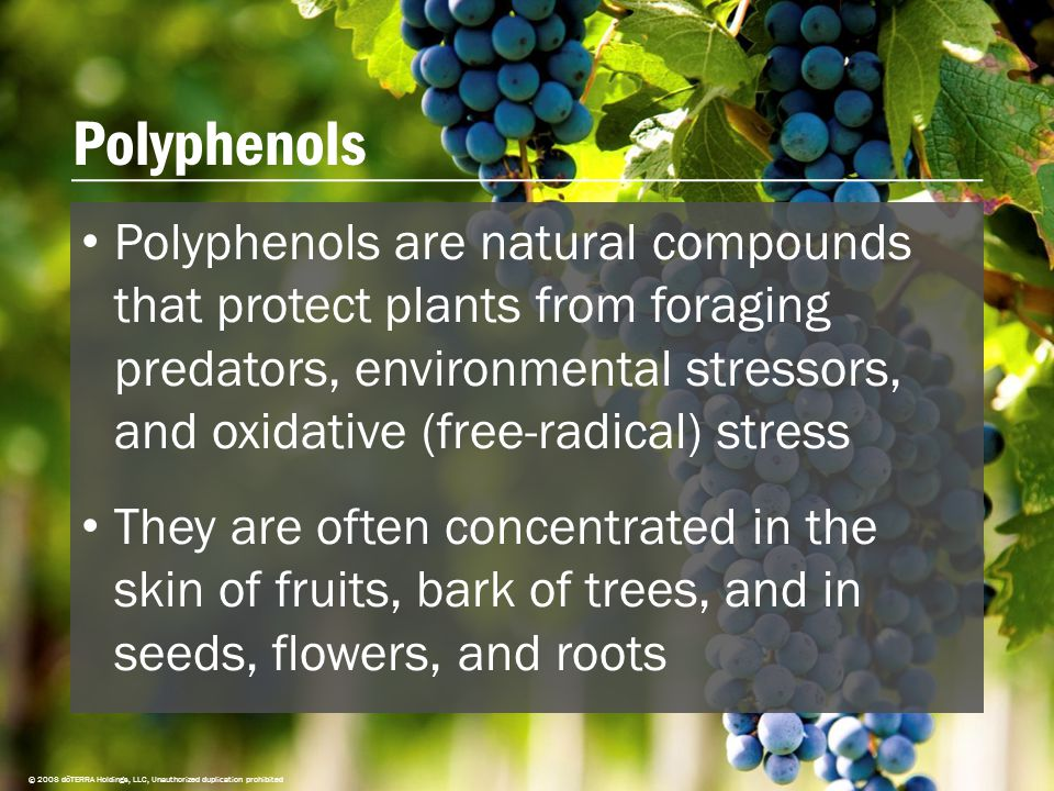 Polyphenols © 2008 dōTERRA Holdings, LLC, Unauthorized duplication prohibited Polyphenols are natural compounds that protect plants from foraging predators, environmental stressors, and oxidative (free-radical) stress They are often concentrated in the skin of fruits, bark of trees, and in seeds, flowers, and roots