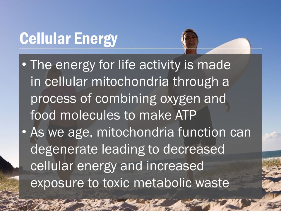 The energy for life activity is made in cellular mitochondria through a process of combining oxygen and food molecules to make ATP As we age, mitochondria function can degenerate leading to decreased cellular energy and increased exposure to toxic metabolic waste