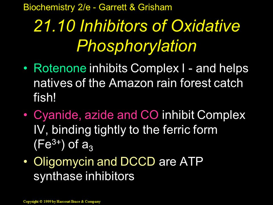 Biochemistry 2/e - Garrett & Grisham Copyright © 1999 by Harcourt Brace & Company 21.10 Inhibitors of Oxidative Phosphorylation Rotenone inhibits Complex I - and helps natives of the Amazon rain forest catch fish.