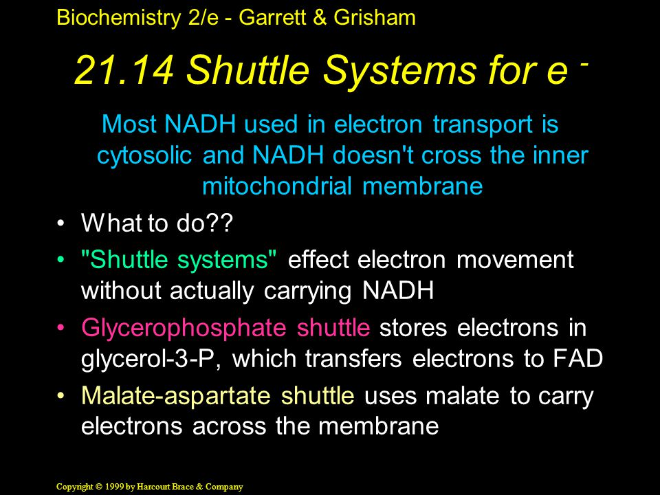 Biochemistry 2/e - Garrett & Grisham Copyright © 1999 by Harcourt Brace & Company 21.14 Shuttle Systems for e - Most NADH used in electron transport is cytosolic and NADH doesn t cross the inner mitochondrial membrane What to do?.