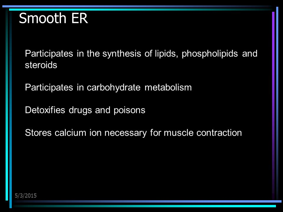 5/3/2015 Smooth ER Participates in the synthesis of lipids, phospholipids and steroids Participates in carbohydrate metabolism Detoxifies drugs and po
