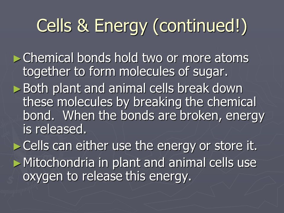 Cells & Energy (continued!) ► Chemical bonds hold two or more atoms together to form molecules of sugar. ► Both plant and animal cells break down thes