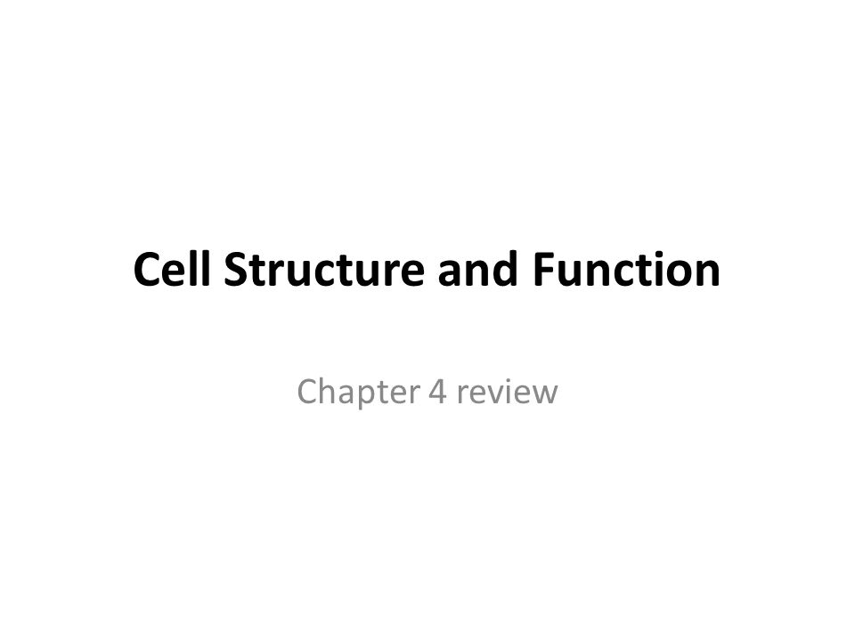 Cell Structure and Function Chapter 4 review