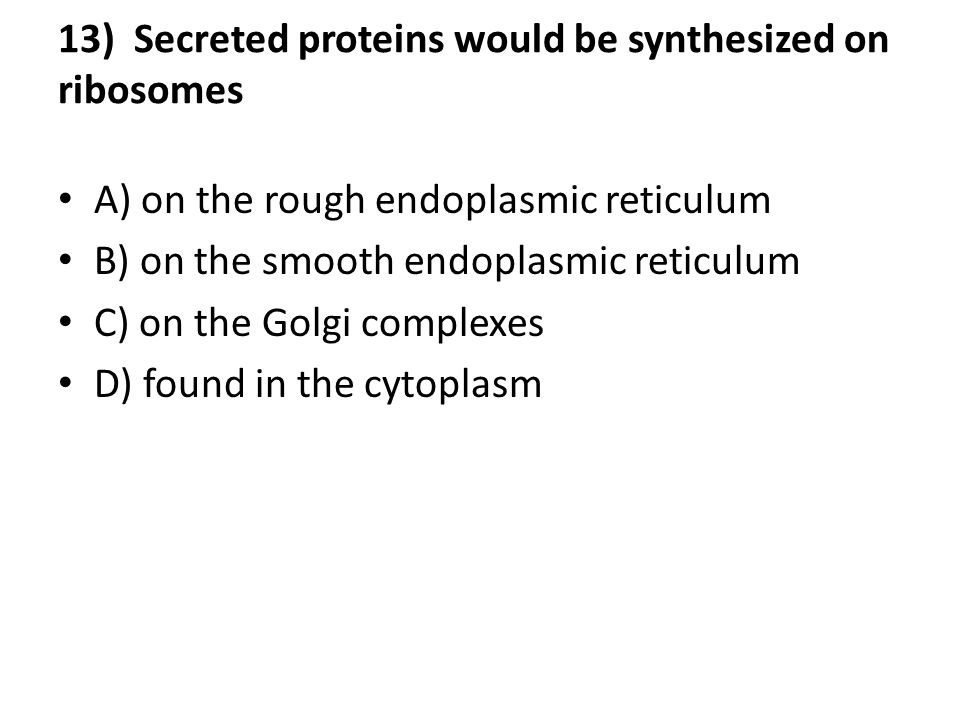 13) Secreted proteins would be synthesized on ribosomes A) on the rough endoplasmic reticulum B) on the smooth endoplasmic reticulum C) on the Golgi complexes D) found in the cytoplasm