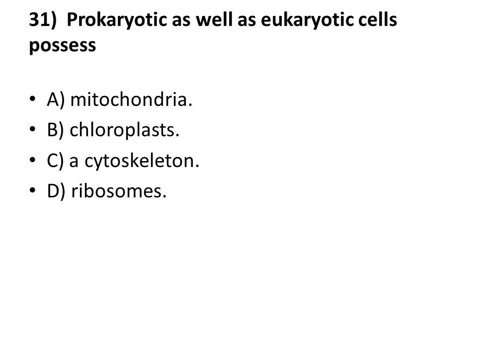 31) Prokaryotic as well as eukaryotic cells possess A) mitochondria. B) chloroplasts. C) a cytoskeleton. D) ribosomes.
