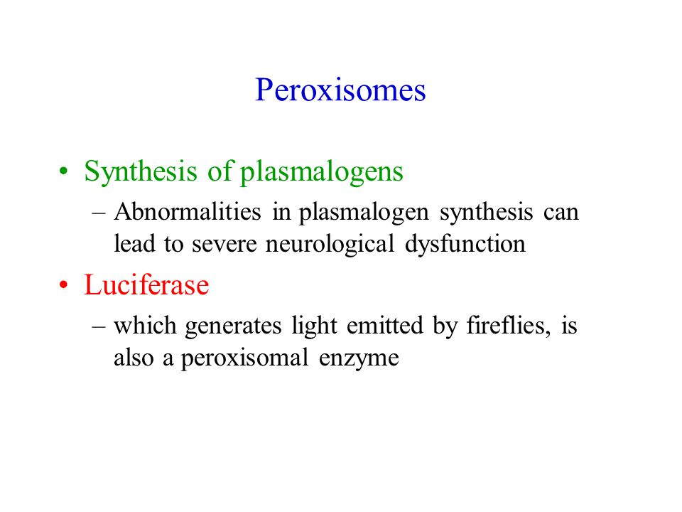 Peroxisomes Synthesis of plasmalogens –Abnormalities in plasmalogen synthesis can lead to severe neurological dysfunction Luciferase –which generates light emitted by fireflies, is also a peroxisomal enzyme