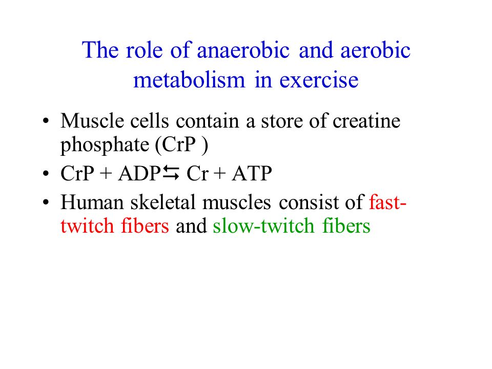 The role of anaerobic and aerobic metabolism in exercise Muscle cells contain a store of creatine phosphate (CrP ) CrP + ADP  Cr + ATP Human skeletal muscles consist of fast- twitch fibers and slow-twitch fibers