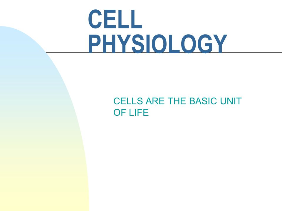 CELL PHYSIOLOGY CELLS ARE THE BASIC UNIT OF LIFE
