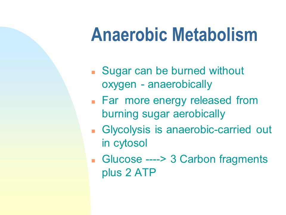 Anaerobic Metabolism n Sugar can be burned without oxygen - anaerobically n Far more energy released from burning sugar aerobically n Glycolysis is anaerobic-carried out in cytosol n Glucose ----> 3 Carbon fragments plus 2 ATP