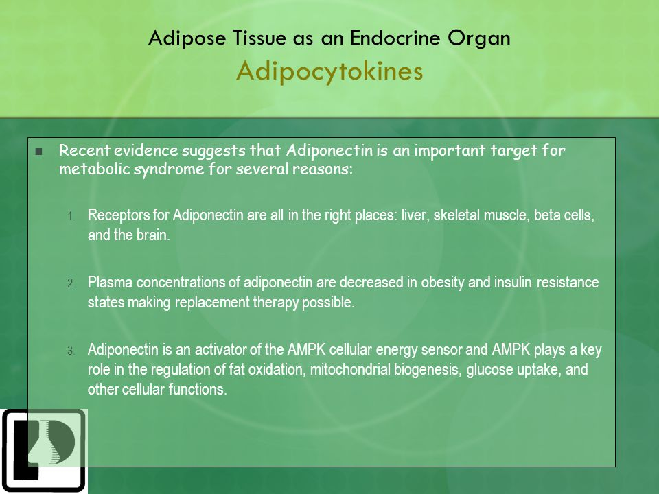 Adipose Tissue as an Endocrine Organ Adipocytokines Recent evidence suggests that Adiponectin is an important target for metabolic syndrome for several reasons: 1.
