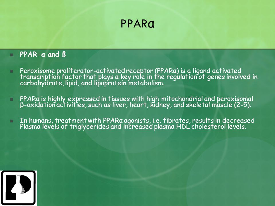 PPAR α PPAR-α and ß Peroxisome proliferator-activated receptor (PPARα) is a ligand activated transcription factor that plays a key role in the regulat