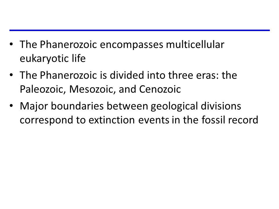 Fig 25-UN6 Animals Billions of years ago 4 3 2 1