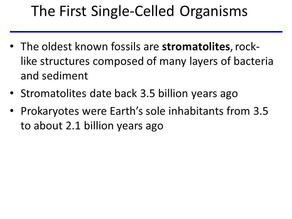 Fig 25-UN2 Prokaryotes Billions of years ago 4 3 2 1