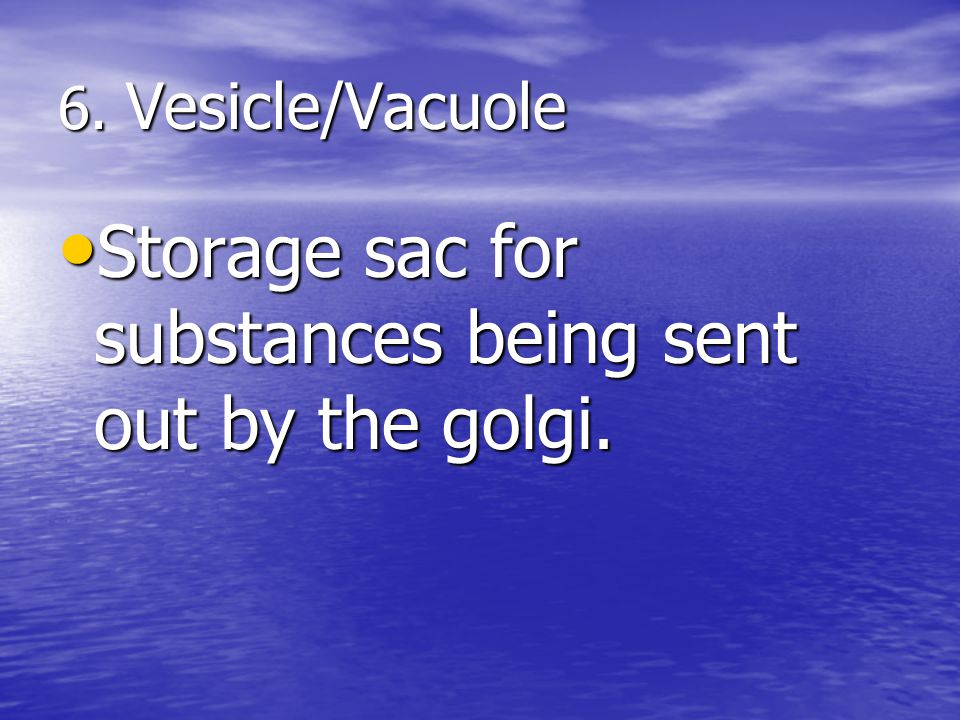 24 Golgi Animation Materials are transported from Rough ER to Golgi to the cell membrane by VESICLES copyright cmassengale