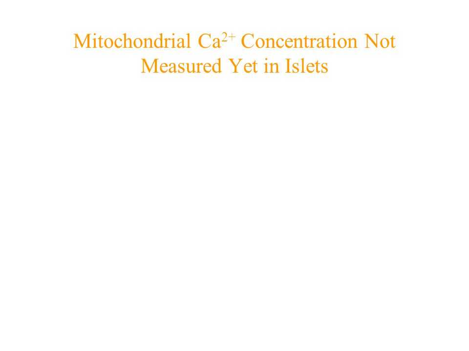 Mitochondrial Ca 2+ Concentration Not Measured Yet in Islets